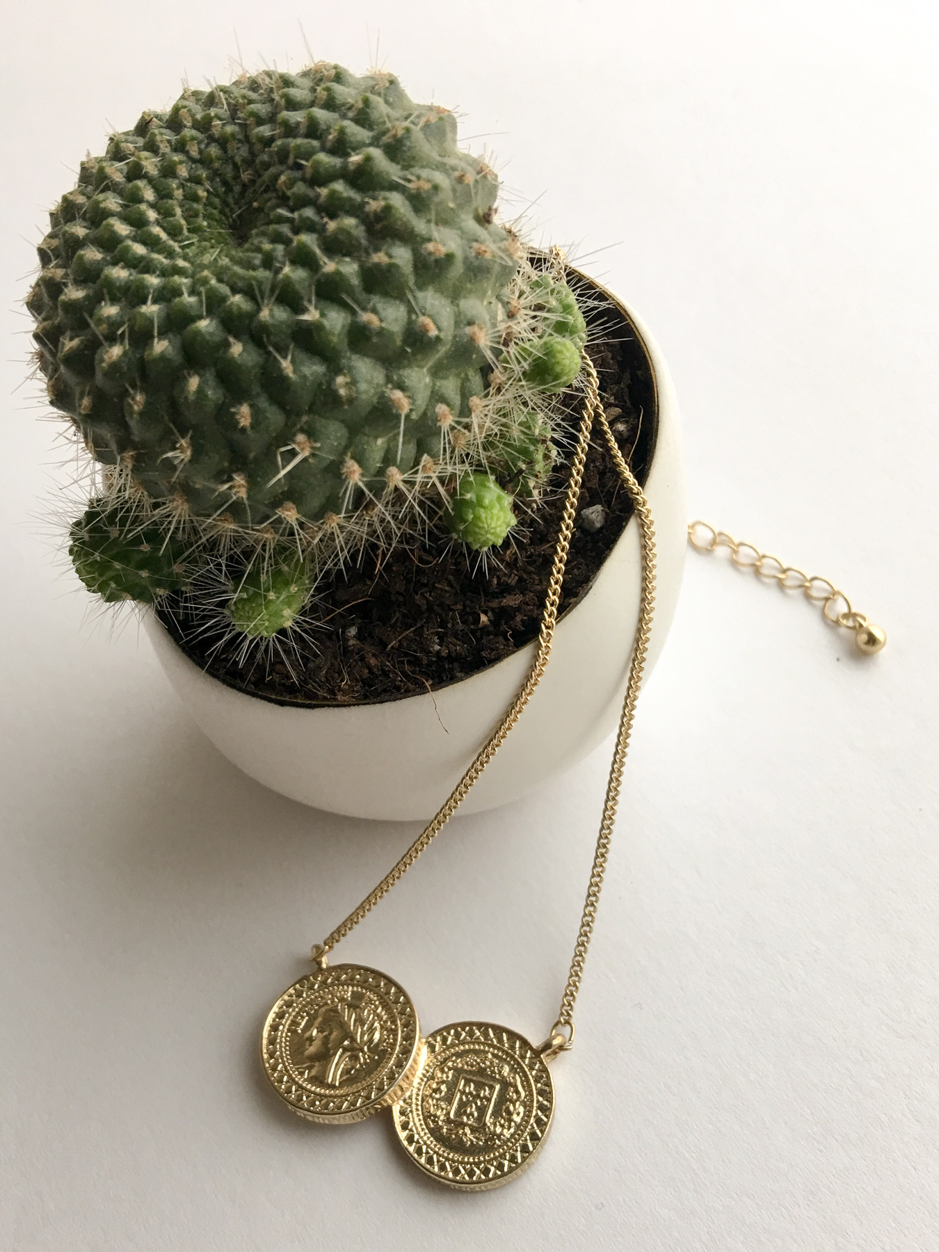 Kate-Spade-Necklace-and-Cactus.jpg